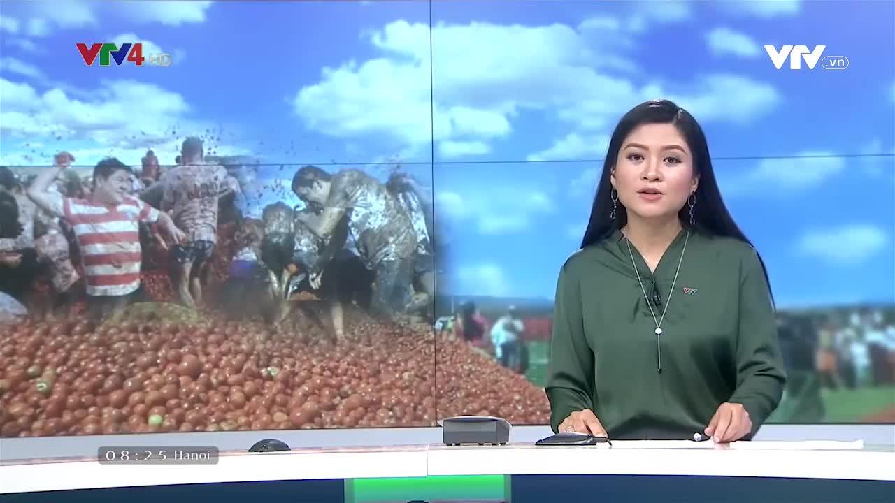 News 8 AM - 6/05/2019