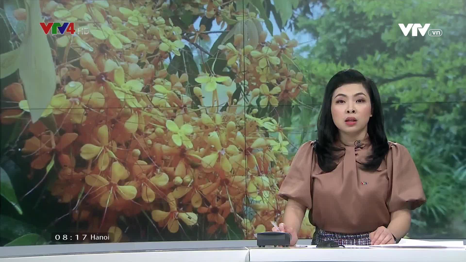 News 8 AM - 4/01/2021