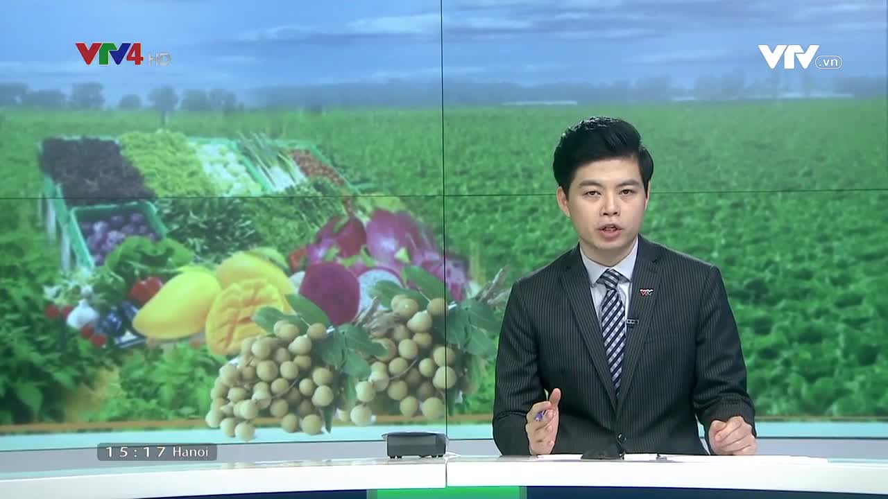 News 3 PM - 9/14/2021
