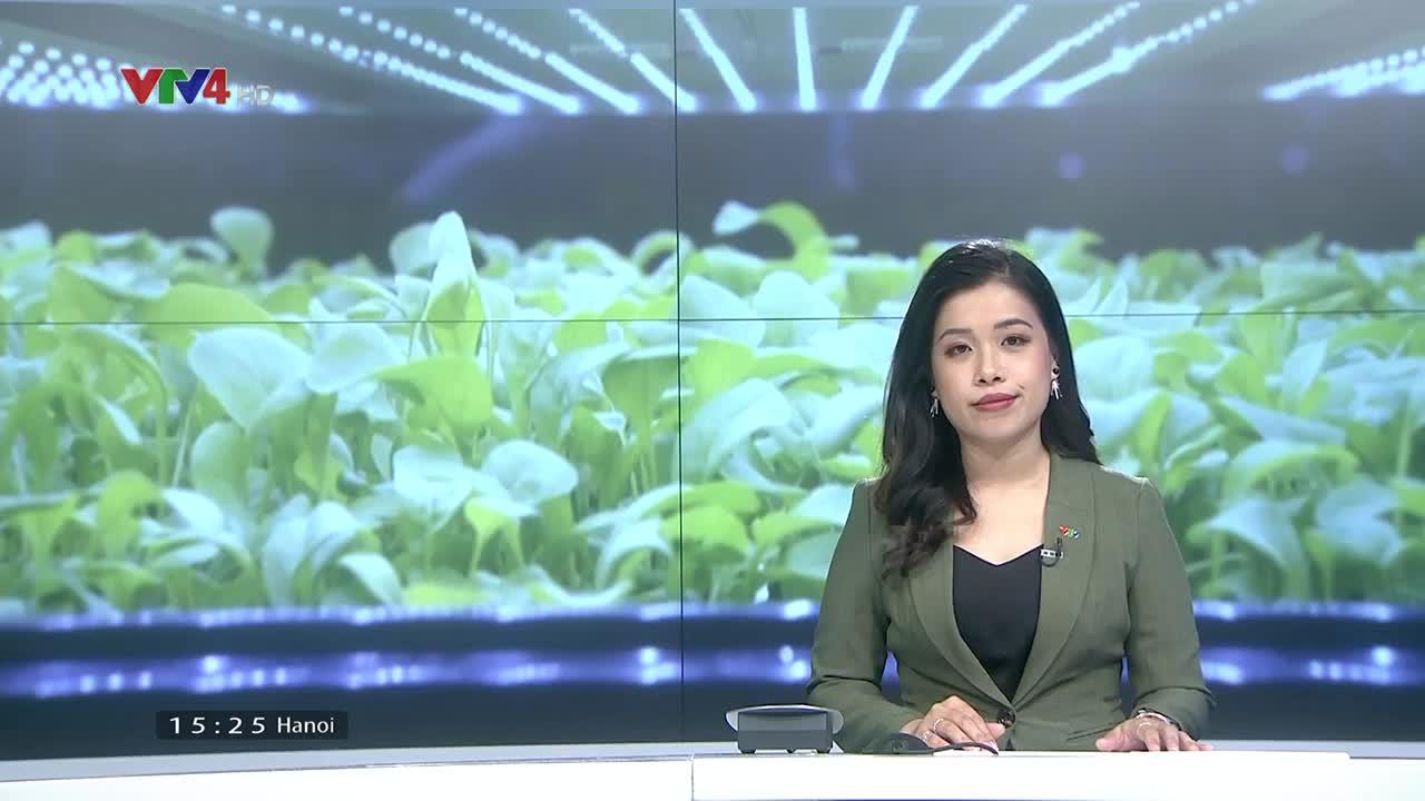 News 3 PM - 9/04/2021