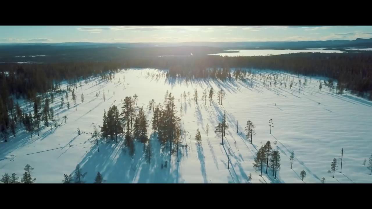 Chế độ Neve