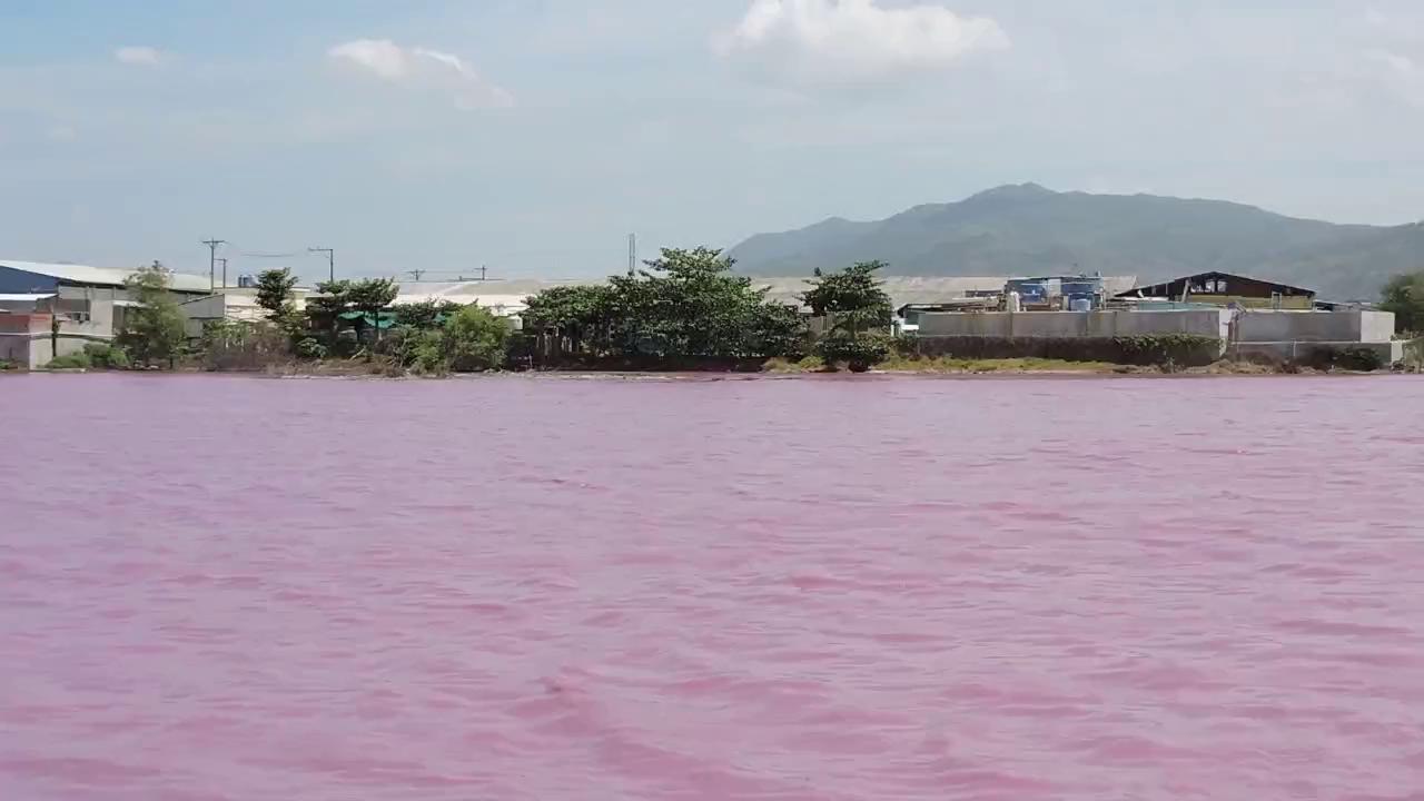 Nước tại cống số 6 lại chuyển thành màu tím