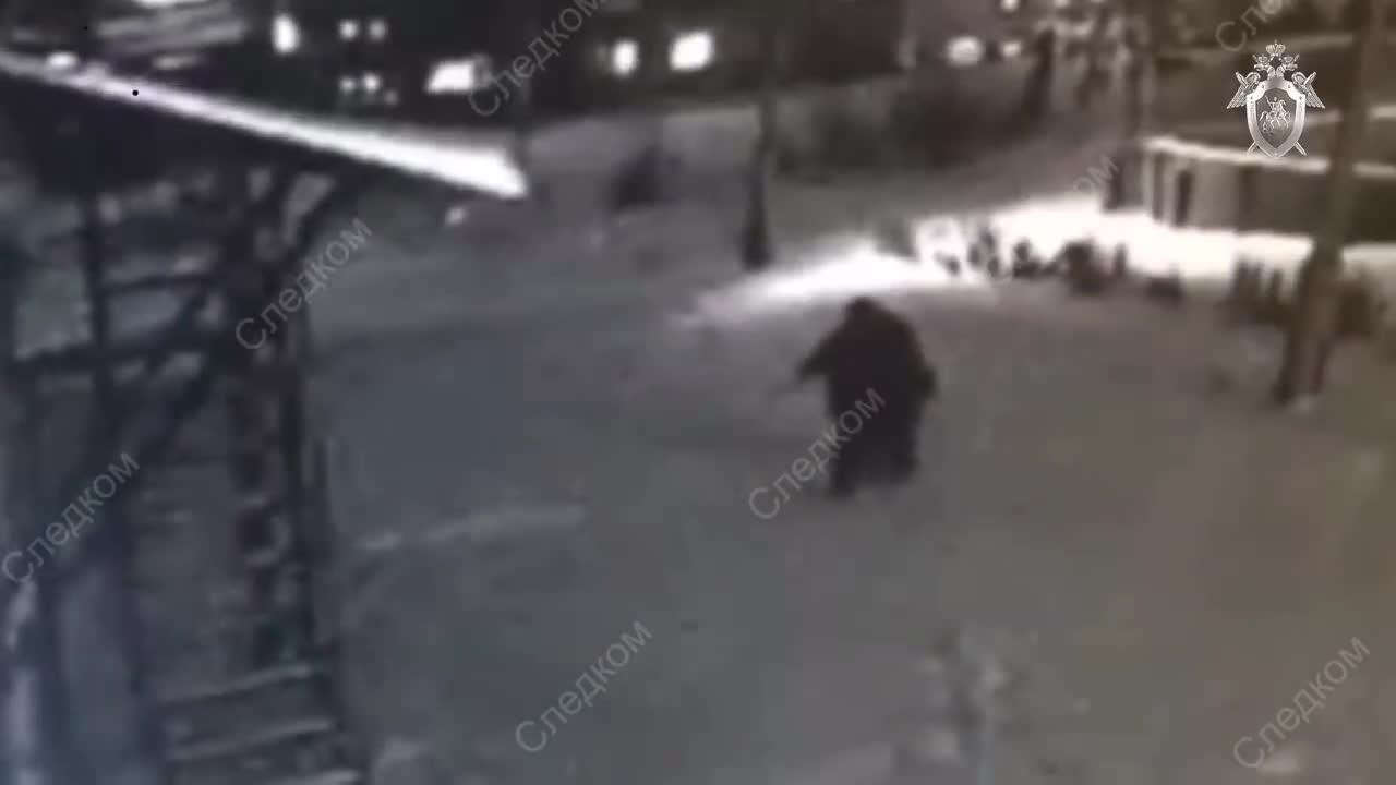 Video bé gái chống chọi kẻ tấn công.