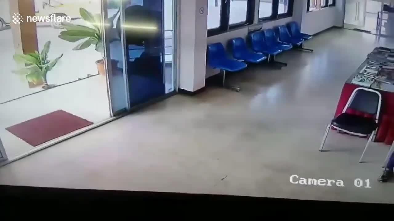 Video: Rắn dài 1,8m đột nhập đồn cảnh sát, chồm lên cắn người.