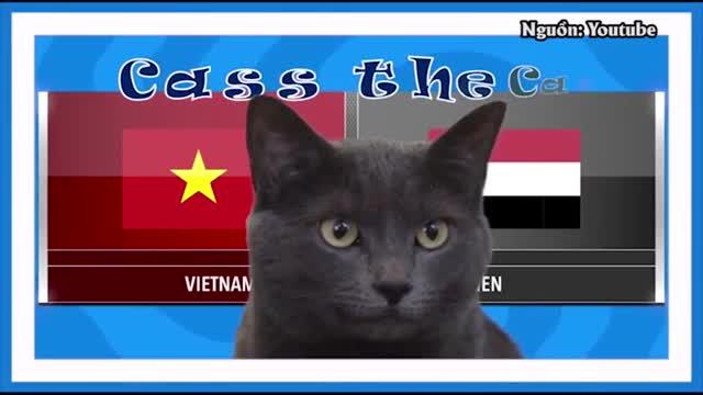'Mèo tiên tri nước Anh' dự đoán Việt Nam hạ đẹp Yemen
