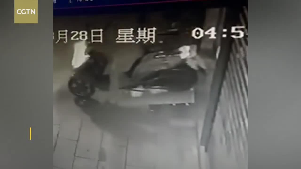 Chủ nhà vừa rời đi, tên trộm đã định chui qua cửa nhưng bất ngờ gặp sự cố nhớ đời.