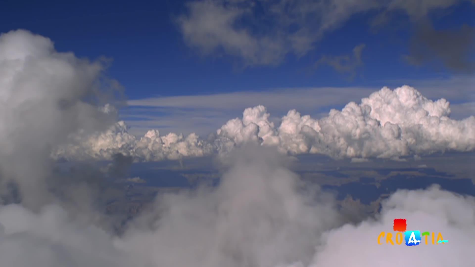 Cò đực bay 14 000 km suốt 17 năm để về gặp cò cái bị gãy cánh gây xúc động