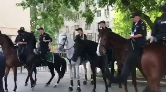 Mục kích cảnh sát Nga cưỡi tuấn mã tuần tra sân đấu World Cup