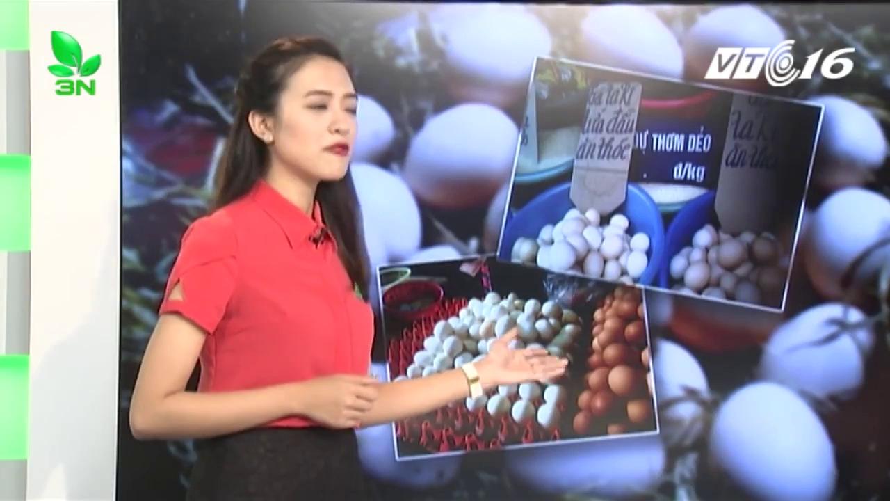 Bí ẩn trứng gà ta bán tràn lan ngoài chợ
