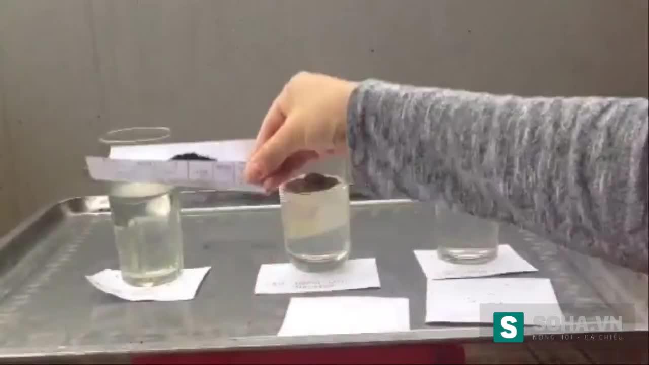 Chỉ cần 3 cốc nước lọc, phân biệt cà phê độc hại