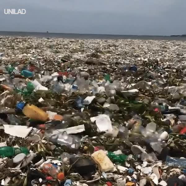 Clip bãi biển nhiều rác tới mức sóng không đánh nổi ở Dominica gióng lên hồi chuông cảnh tỉnh về ô nhiễm môi trường
