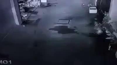 Dàn cảnh cướp xe ở TP. Hồ Chí Minh