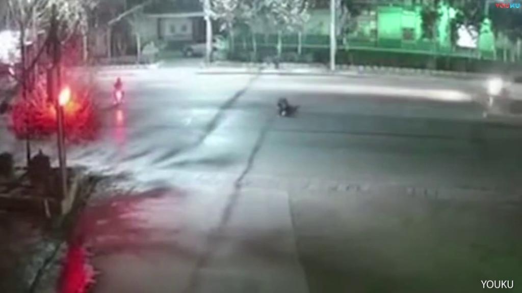 Đi đường, người phụ nữ bất ngờ bị chó dữ tấn công