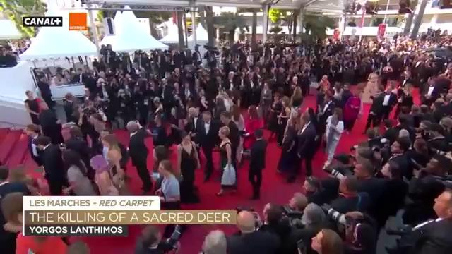 Clip Lý Nhã Kỳ khoe vẻ kiêu sa trên thảm đỏ liên hoan phim quốc tế.