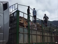 Bộ đội Biên phòng Quảng Trị bắt giữ xe chở gỗ lậu qua cửa khẩu.