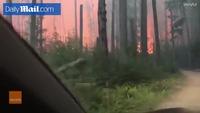 Thoát chết trong gang tấc khi lái xe băng qua biển lửa cháy rừng ở Mỹ