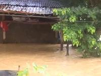 Bình Định: Lũ dâng cao lịch sử, hàng ngàn hộ dân chìm trong biển nước