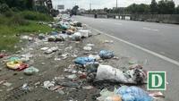 Rác bủa vây quốc lộ ở Quảng Ngãi