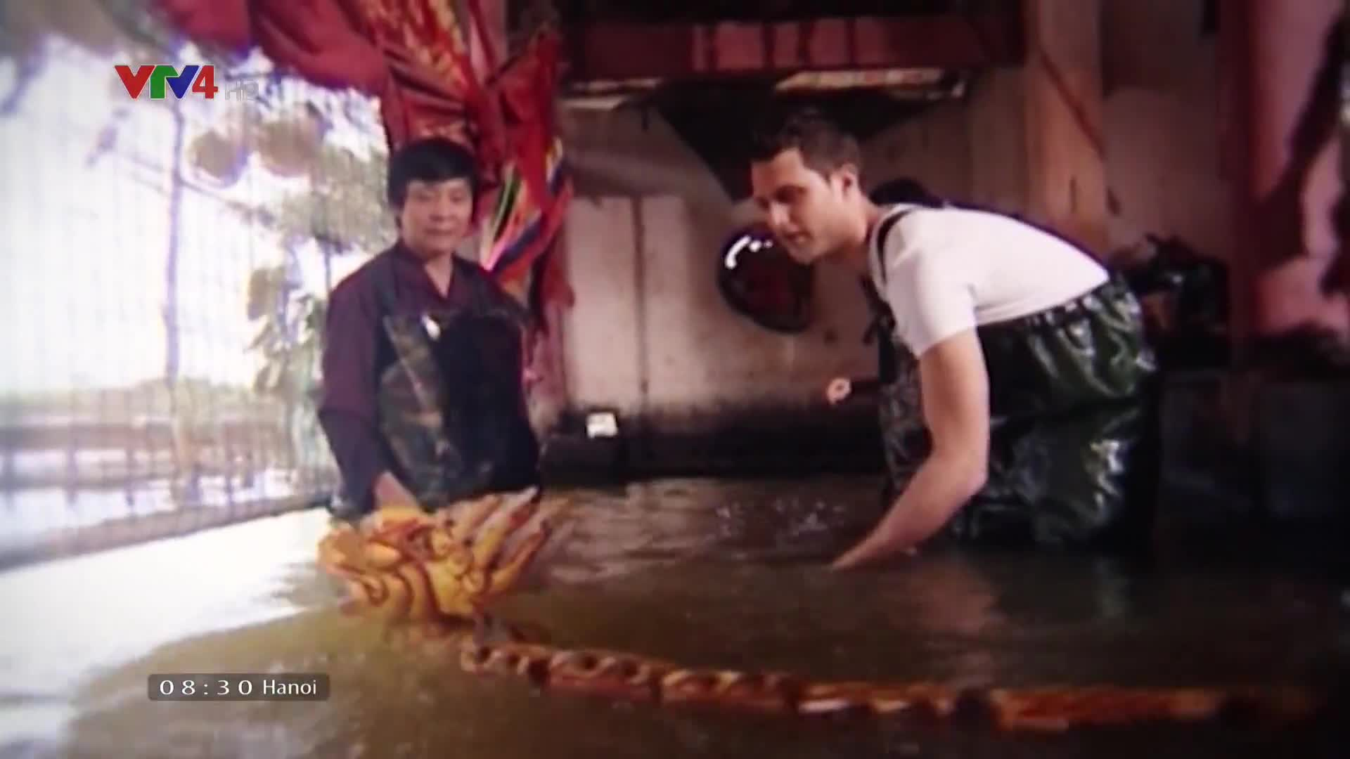 Vietnam Discovery: Ca Mau forest