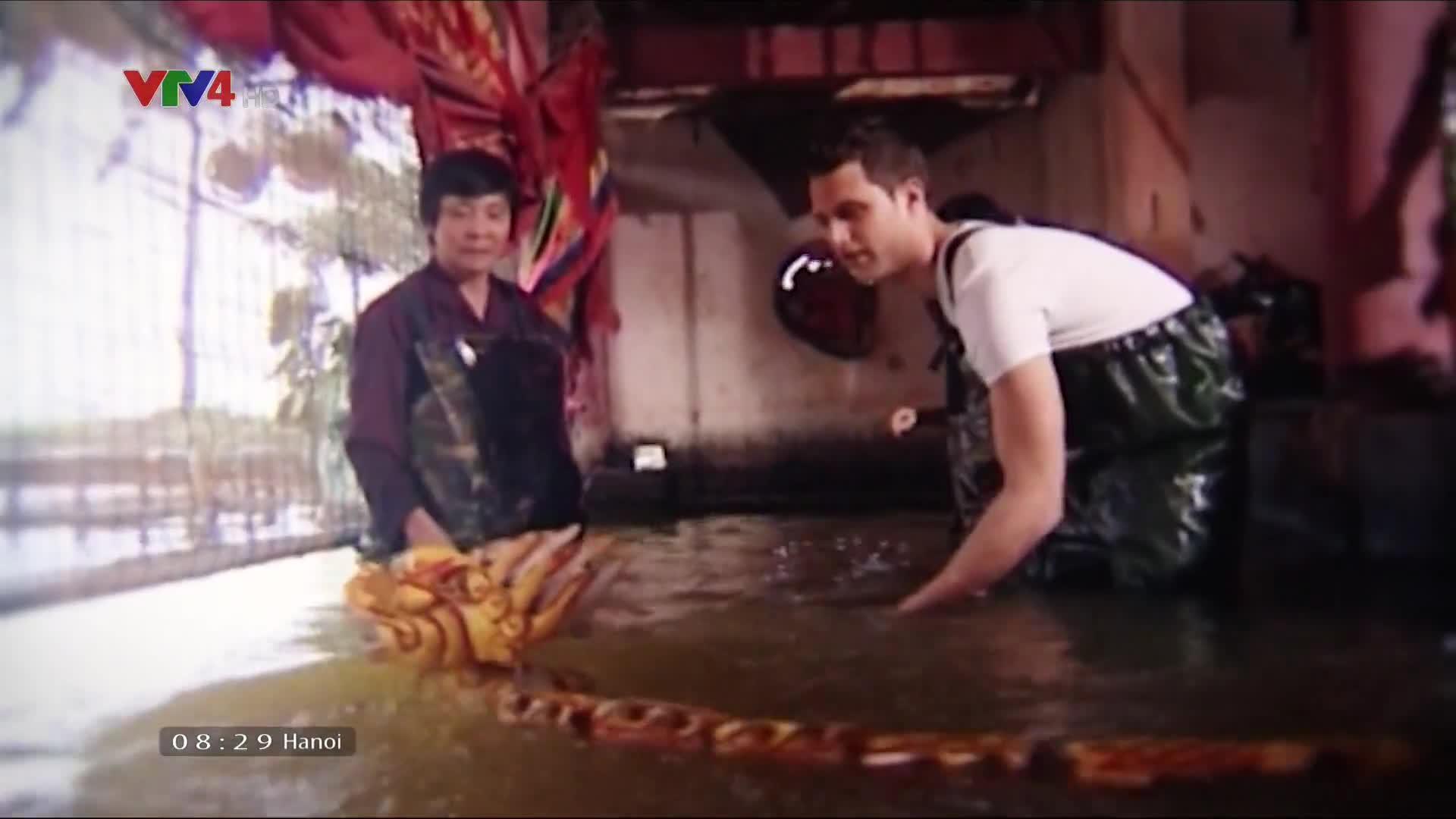 Vietnam Discovery: Ben Tre: Coconut kingdom