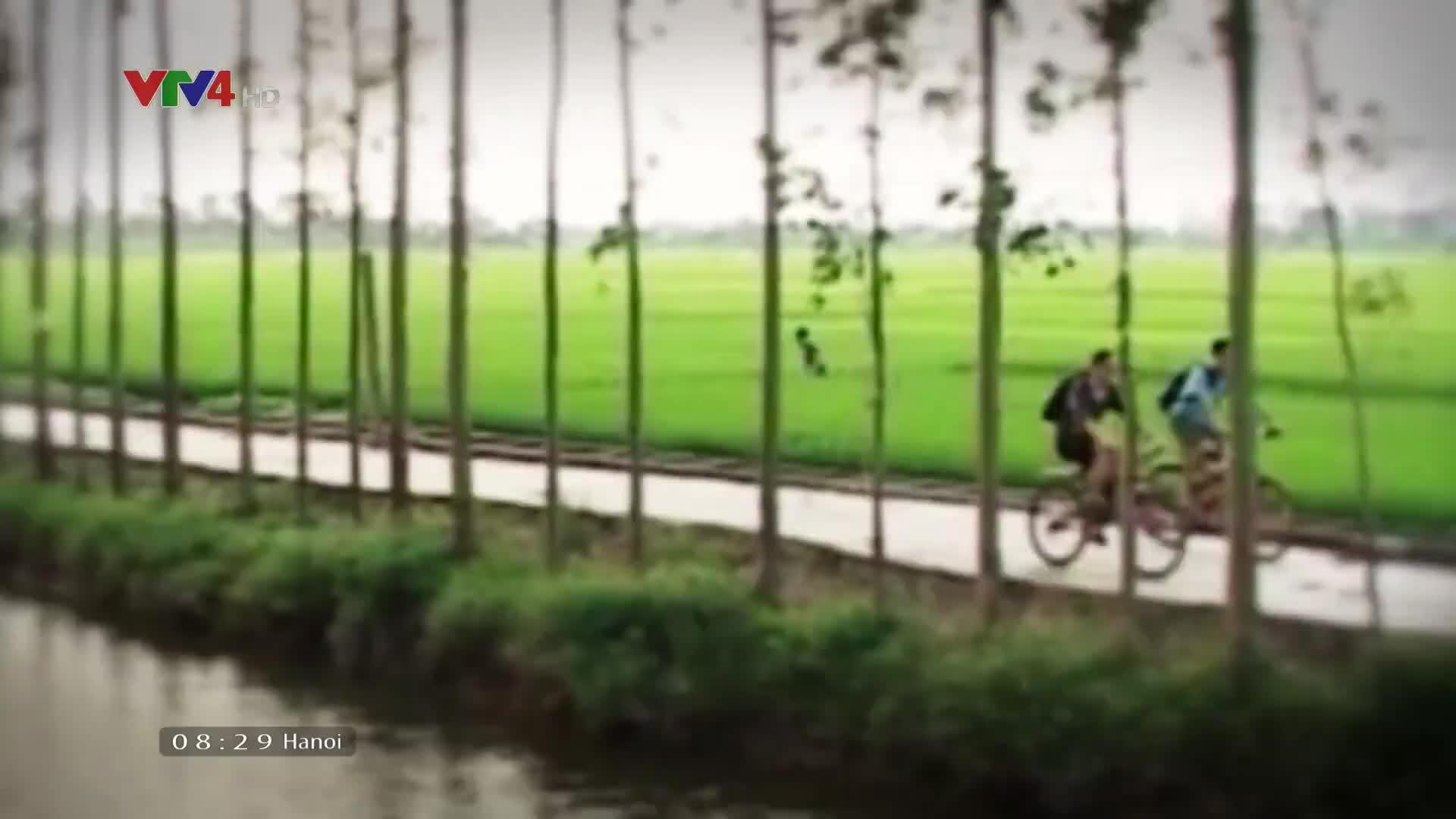 Vietnam Discovery: Mystery of wetland ecosystem