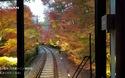 Tuyến đường sắt với khung cảnh đẹp như trong mơ tại Nhật Bản