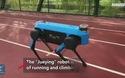 """Robot của Trung Quốc bị """"tố"""" nhái kiểu dáng chú chó robot nổi tiếng của Mỹ"""