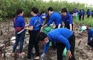 Tuổi trẻ Bạc Liêu chung tay làm sạch bờ biển, bảo vệ môi trường