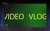 Video Storm: Bạn đã xem chưa? - Số 6
