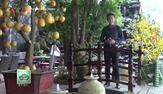 Tự hào miền Trung: Nhật Kim Anh - Nữ ca sĩ đa tài của showbiz Việt