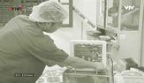 Chân dung cuộc sống: Phát triển y tế biển đảo