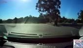 Tay biker chỉ cách đầu xe tải trong gang tấc