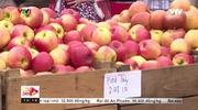 Chợ nông sản Alexandria (Mỹ) - Một phần lịch sử của thành phố