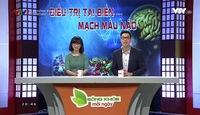 Sống khỏe mỗi ngày: Đông - Tây y trong điều trị tai biến mạch máu não