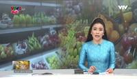 Bản tin tiếng Việt 12h VTV4 - 19/02/2018