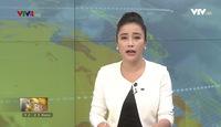 Bản tin tiếng Việt 12h VTV4 - 25/5/2018