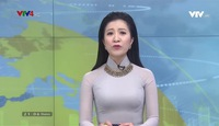 Bản tin tiếng Việt 21h VTV4 - 23/01/2019