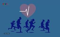 Khỏe thật đơn giản: Để tim khỏe mạnh