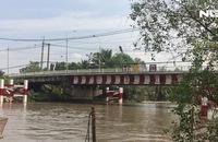 Lao xuống sông cứu người phụ nữ nhảy cầu tự tử