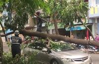 Lốc xoáy nhiều nơi ở TP HCM, 3 người bị thương