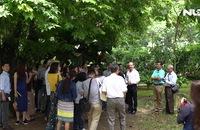 Ghi nhanh: Tổng lãnh sự quán Pháp tại TP HCM mở cửa cho khách tham quan
