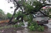Cần Giờ dọn dẹp đường phố ngổn ngang sau bão