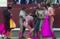 Clip: Kinh hoàng đấu sĩ bị bò tót 450 kg húc trọng thương