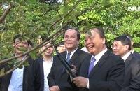 Thủ tướng Nguyễn Xuân Phúc thăm di tích cụ Phó bảng Nguyễn Sinh Sắc