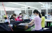 Truyền hình Công nhân - Công đoàn TP HCM - Bản tin Công đoàn