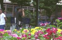 Ghi nhanh: Hàng ngàn bông hoa khoe sắc trước nhà thờ Đức Bà