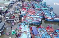 Ghi nhanh: Ninh Thuận tất bật ứng phó với bão số 9