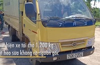 Bắt xe tải chở 1.200 kg thịt heo sữa không rõ nguồn gốc