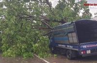 Bình Định ngổn ngang sau bão lũ