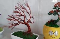 Độc đáo bonsai bằng dây đồng